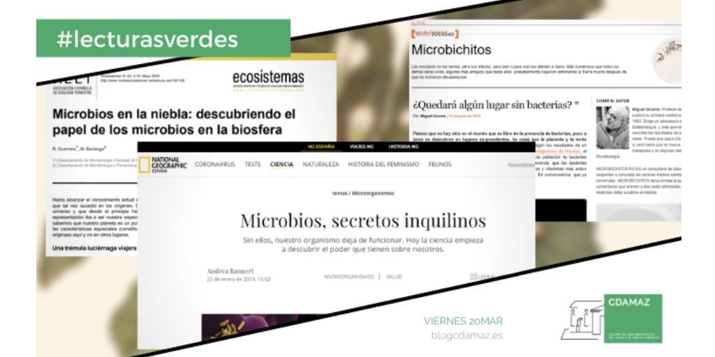 BibliotecaEnCasa_09