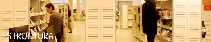 Banner de la página Estructura del Consejo de Bibliotecas